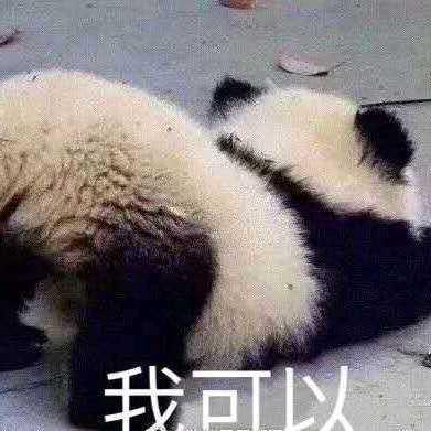 zhangshuyan@mao.mastodonhub.com
